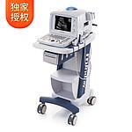 迈瑞Mindray 全数字便携式超声诊断系统 DP-1100Plus