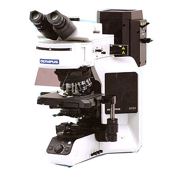 OLYMPUS奥林巴斯 研究级显微镜 BX53双目