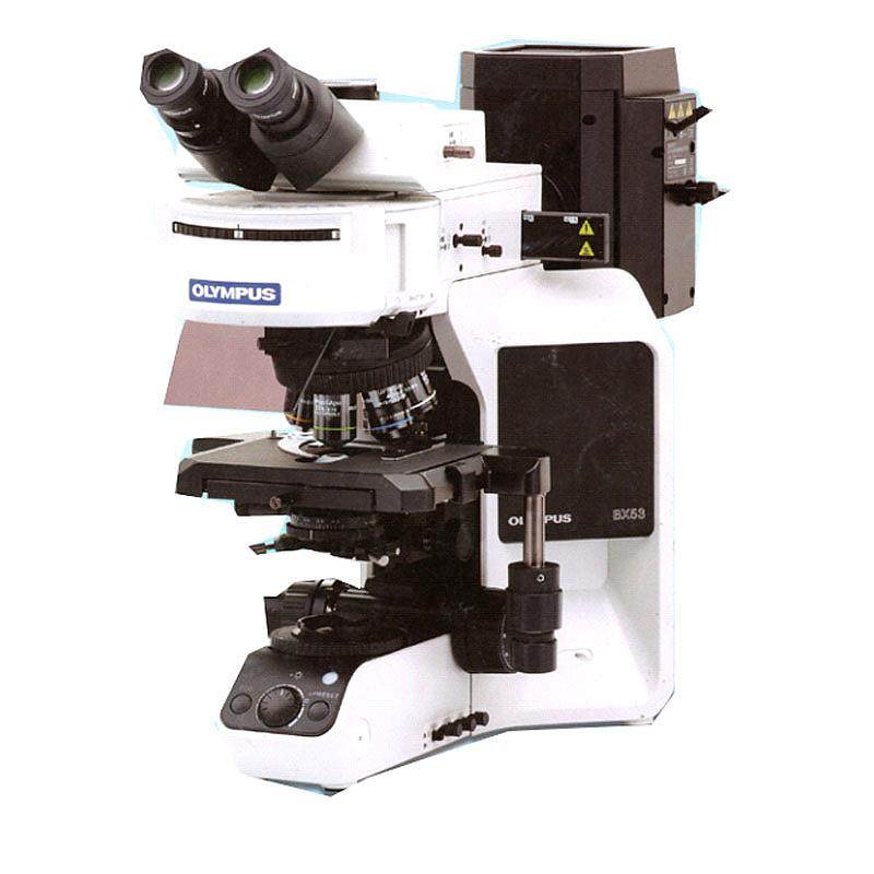 奥林巴斯 OLYMPUS 生物显微镜Biological Microscope BX53三目