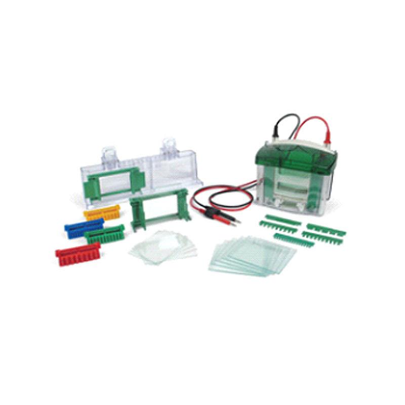 Bio-Rad伯乐 Mini-PROTEAN Tetra小型垂直电泳槽 1658001
