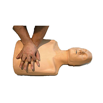 宸博 心肺复苏模拟 人CB/CPR185+