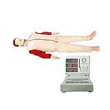 怡然 全自动电脑心肺复苏模拟人 YR/CPR280S