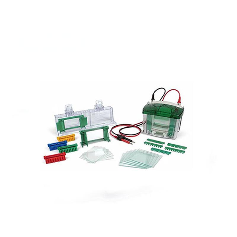 伯乐 Bio-Rad Mini-PROTEAN® 垂直电泳槽 1658030