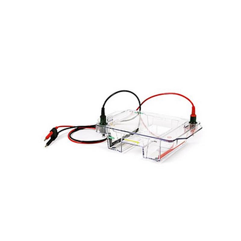 Bio-Rad伯乐 宽式Mini水平电泳槽 1704469