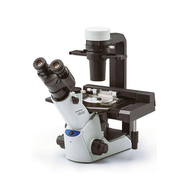 OLYMPUS奥林巴斯 显微镜  CKX53
