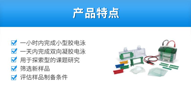 Bio-Rad伯乐-小型垂直电泳槽-1658001_02.jpg