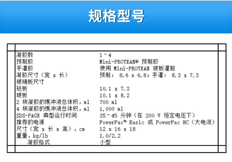 Bio-Rad伯乐-小型垂直电泳槽-1658001_04.jpg