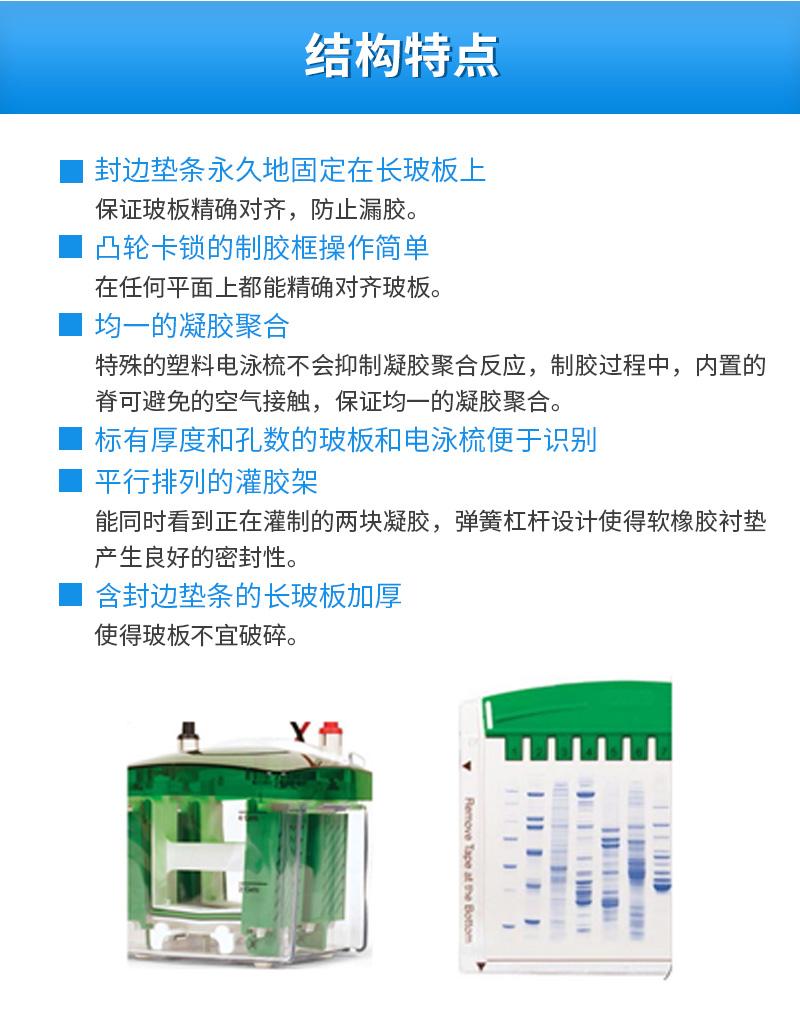 Bio-Rad伯乐-小型垂直电泳槽-1658001_03.jpg